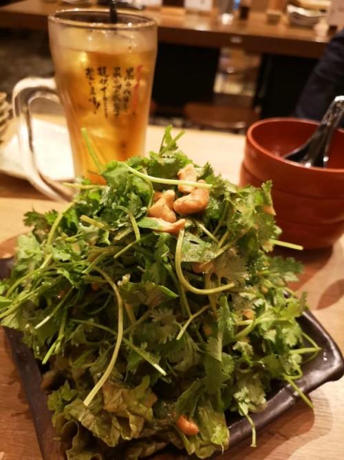 サラダ 餃子 居酒屋 ビール
