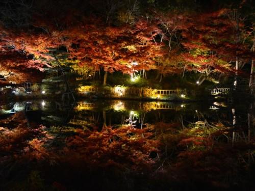 名古屋 紅葉 東山動植物園