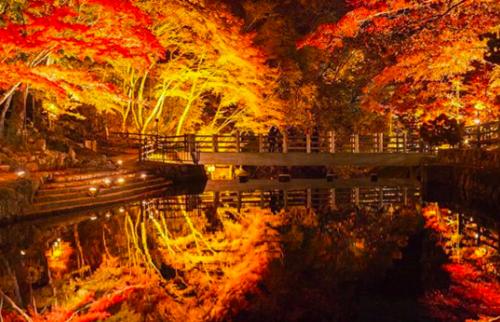 岩屋堂公園 紅葉