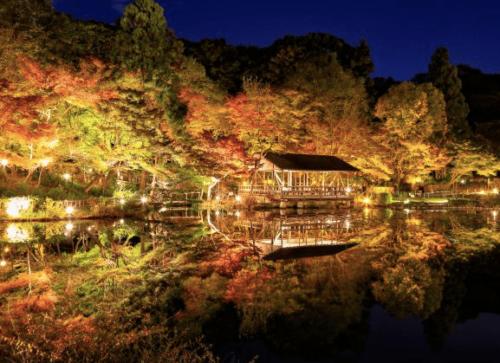 東山公園 紅葉