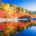 愛知県の秋レジャー|名古屋周辺の紅葉名所を徹底調査