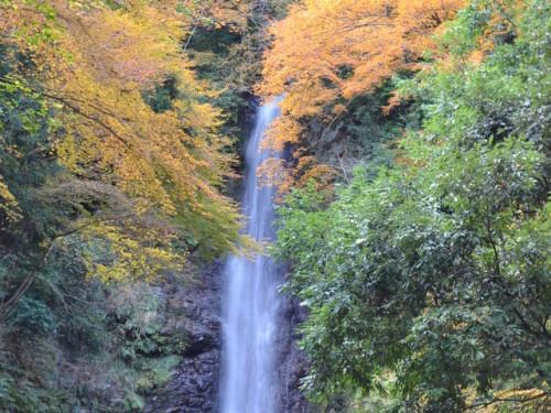 岐阜 パワースポット 養老の滝